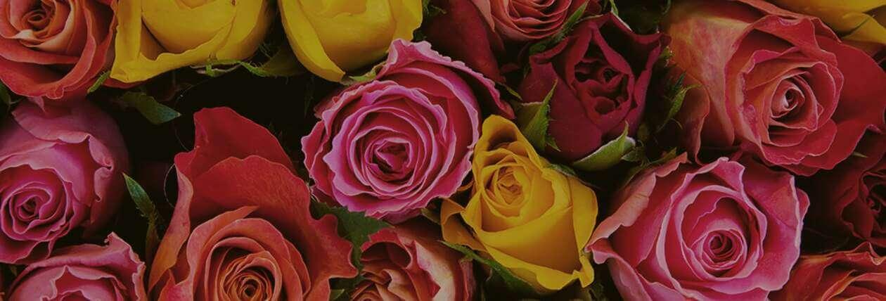 Асбест цветы с доставкой доставка цветов в староконстантинове